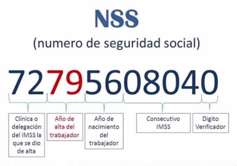 Conformación del número de seguridad social NSS